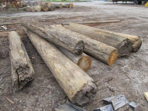 Antique Heart Pine Veneer logs